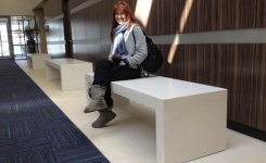 benches-1